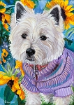 Abbey is a Westie sitting among the sunflowers in her lavender jacket