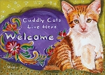 "Caju - orange tabby kitten ""Cuddly Cats Live Here - Welcome"""