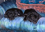 Cassie and Synder - two black lab puppies on a blue couch