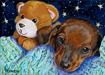 Luke is a tan Dachshund puppy with his favorite bear resting before bedtime