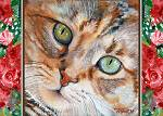 Tabby cat close-up with acqua eyes and roses