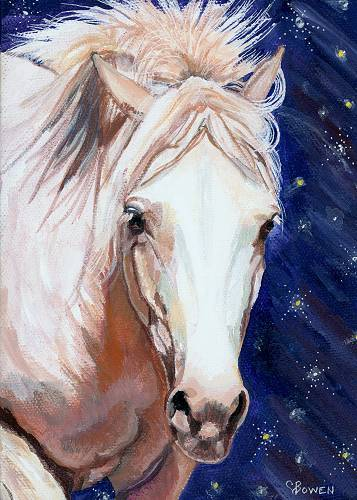 Beautiful white pony, white horse gallooping through the night