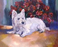 A Westie with roses, Bayley is beautiful