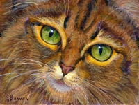Custom cat portrait painting by Connie Bowen of a close-up of green cat eyes for this orange long-haired tabby